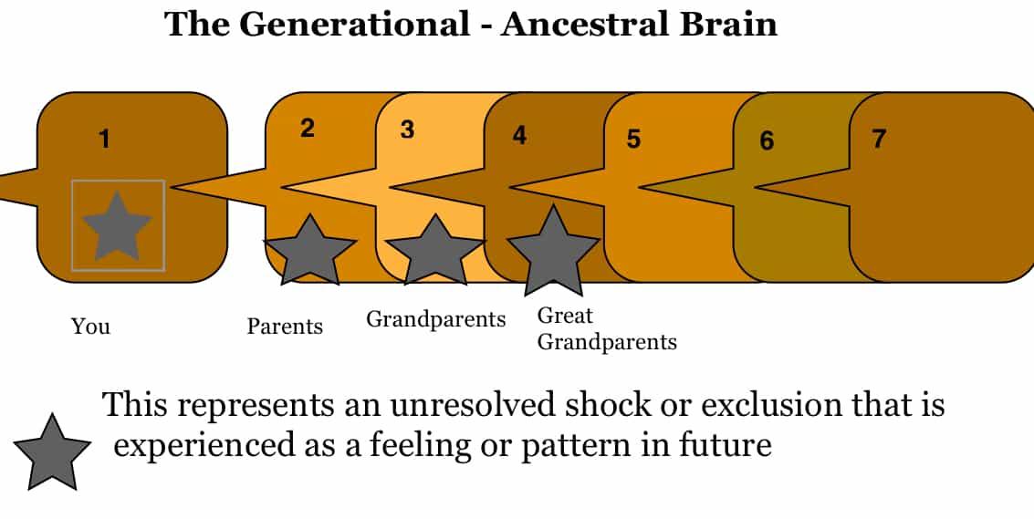 The Ancestral Brain